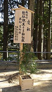 koyamaki.jpg
