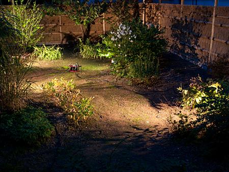 坪庭の照明