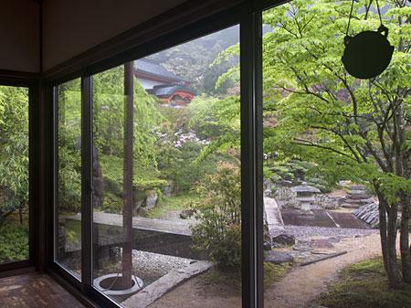 お庭の眺め
