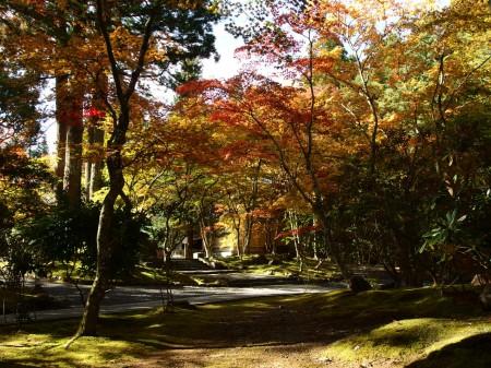 霊宝館前の紅葉